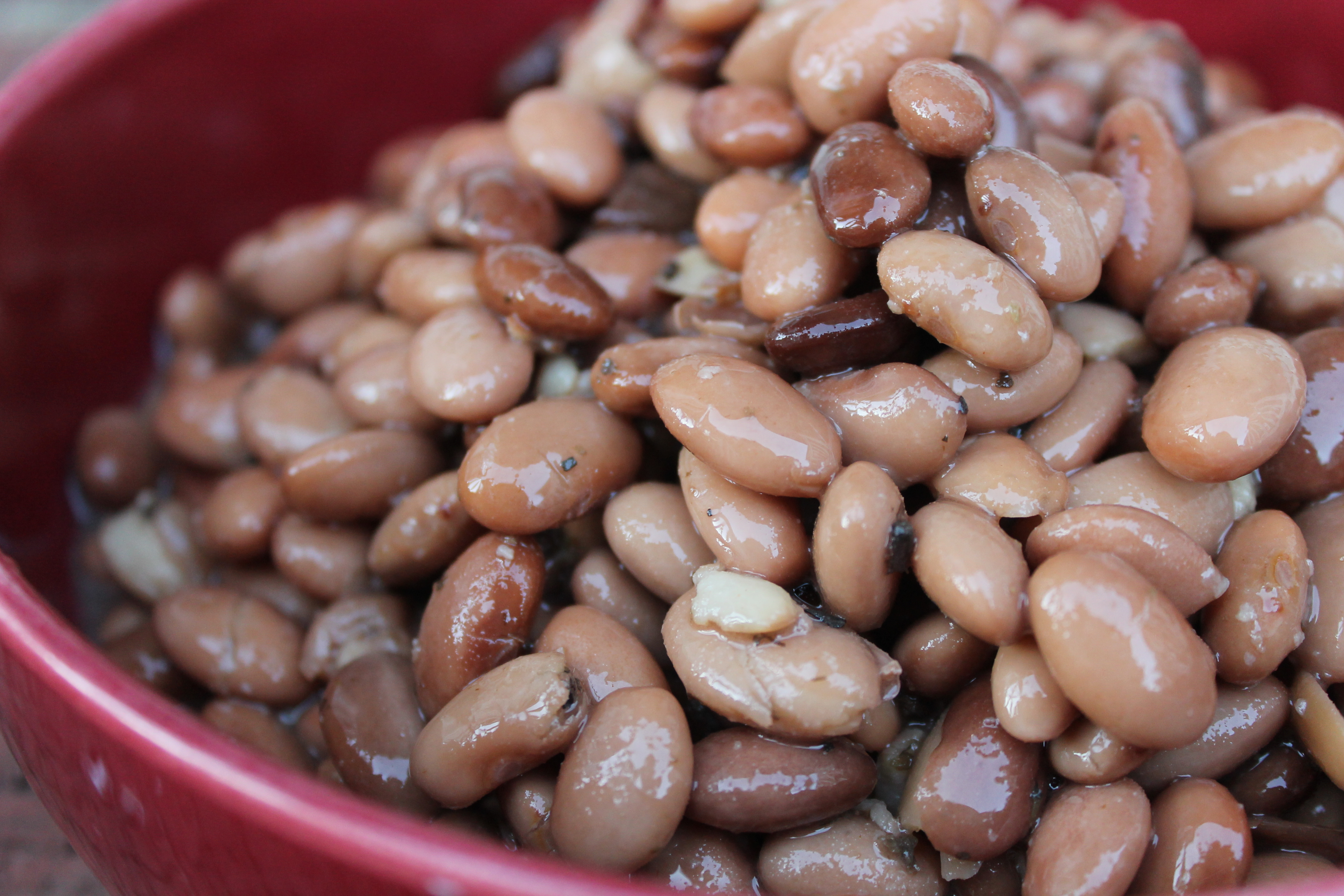 ... Apron Gal: Crock Pot Pinto Beans//Easily the best pinto beans I've