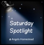 SaturdaySpotlight-293x300